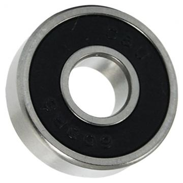 Cylindrical Roller Bearing Series Nu309~Nu213e